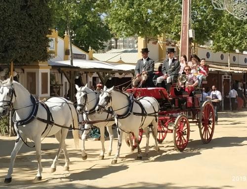 Un 58% de los españoles no les interesa explorar a pie el destino que va a visitar